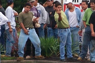 The hard working pillars of society type illegal aliens.